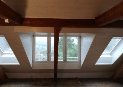 Dachfenster mit Lukarne Dornach