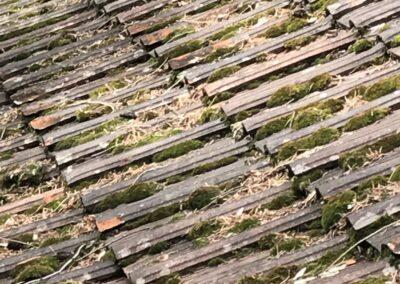 Dach mit Moos verschmutzt
