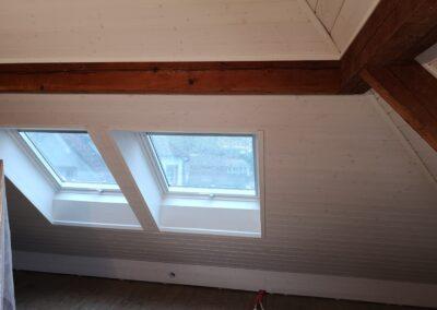 Dachfenster Dornach