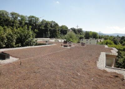 Flachdachsanierung Extensivbegrünung Arlesheim neu